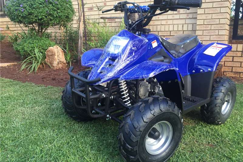 Other Other (Trikes) 110cc 2017