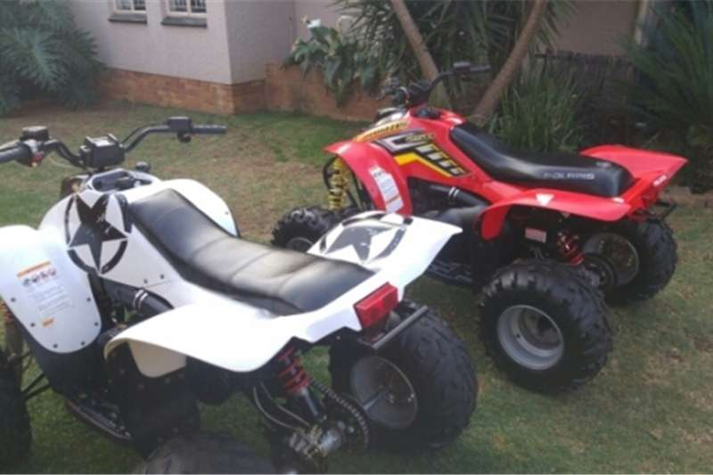 Polaris Trailblazer 0