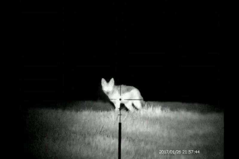 Maxdex Night Vision (Non Recording) Other