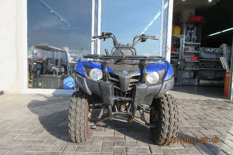 Yamaha Grizzly 300 Other