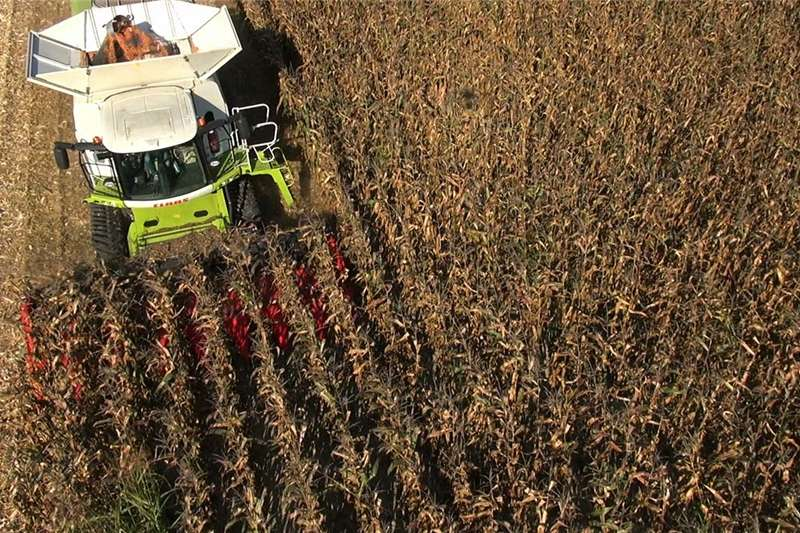 Other combine harvesters and harvesting equipment Harvesters both for sunflower and maize avaliable Combine harvesters and harvesting equipment