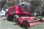 Combine harvesters and harvesting equipment Sunflower heads International 1428 Stroper en Sonneblom tafel