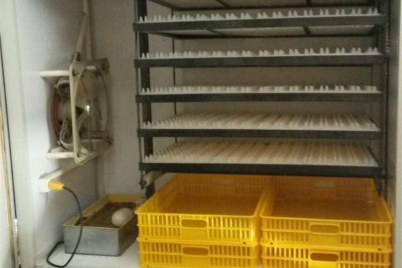 Egg Incubator Incubators for sale – Easyhatch