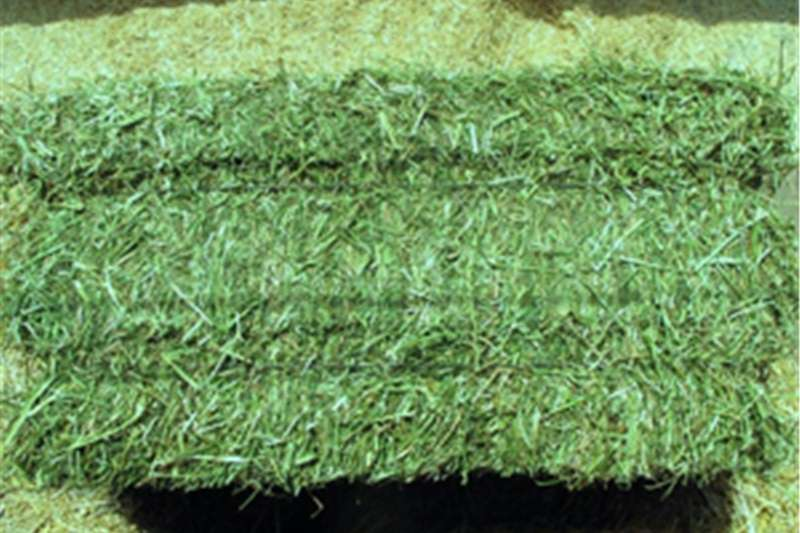 Feed Wagons Lucerne Bales Teff & Eragrostis Hay Bales