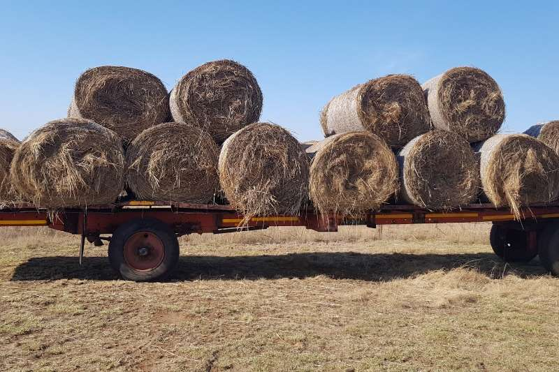 Hay and Forage +-40 Smutsvinger gras net bale