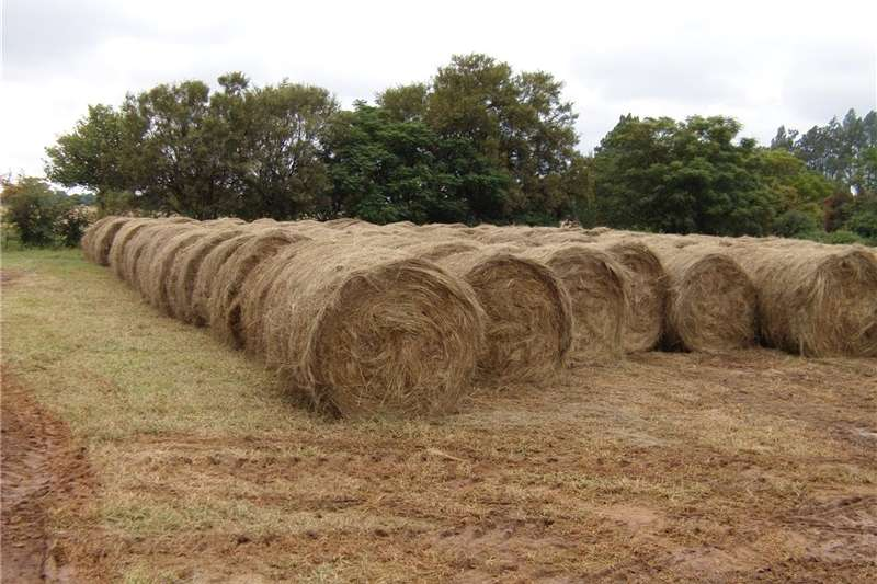 Hay and Forage Balers Bales for sale