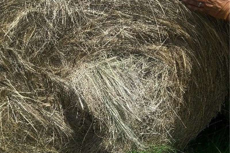 Balers grass bales Hay and forage
