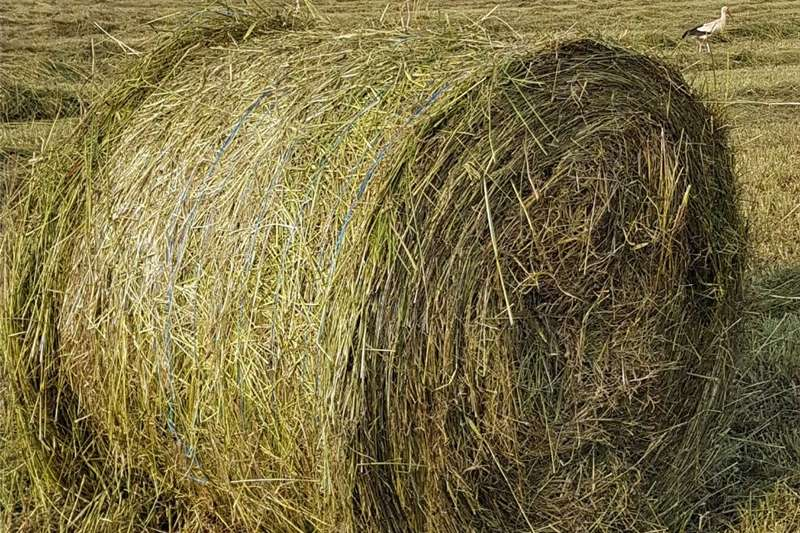 Balers Smutsfinger Bale Hay and forage