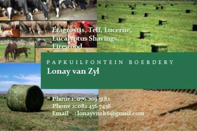 Hay and Forage Other Hay and Forage Bales, Shavings and more!