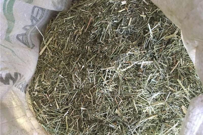 Other hay and forage DenQ Agri   Animal feed and bales for sale Hay and forage