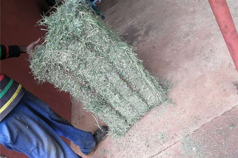 Other hay and forage lusern for sale R50 Hay and forage