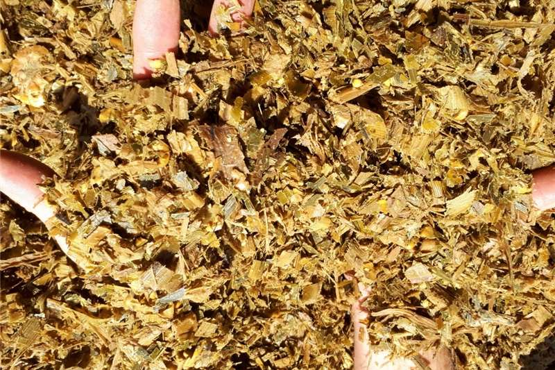 Other hay and forage Silage / Kuilvoer Hay and forage