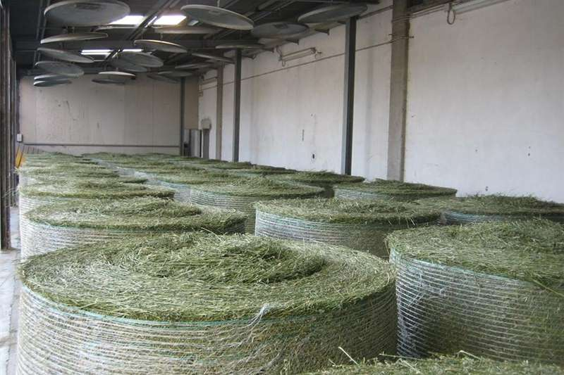 Other hay and forage Teff Bales Eragrostis Bales Hay and forage