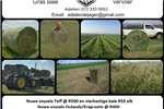 Livestock Livestock feed Bale te koop (Eragrostis, Teff & Lusern)