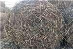 Livestock Livestock feed Grondbonebale te koop