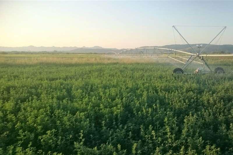 Farming Spilpunt te koop Machinery