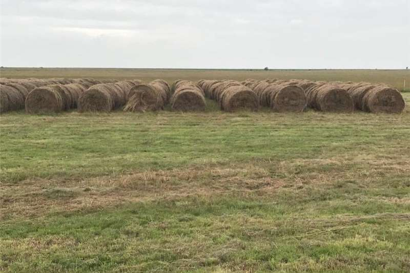 Other 1.2m Rooigras bale