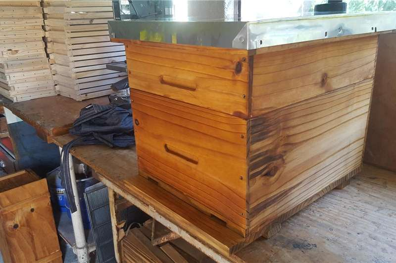 Bee Hives For Sale (Bee ready) Other