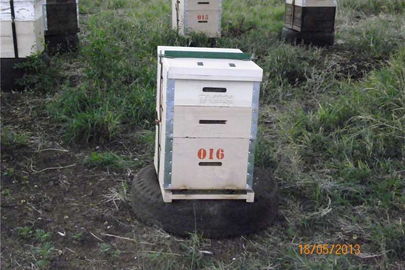 Beehives and other beekeeping equipment Other