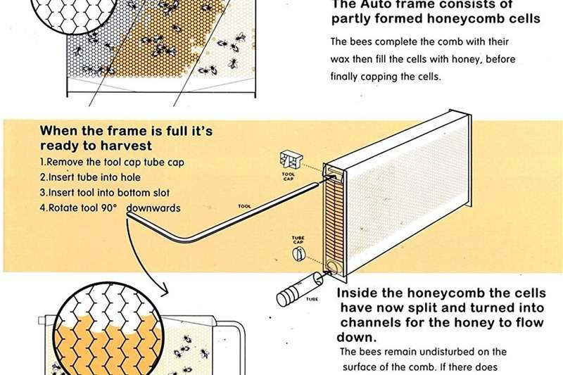 Other FLOW bee hive HONEY ON TAB