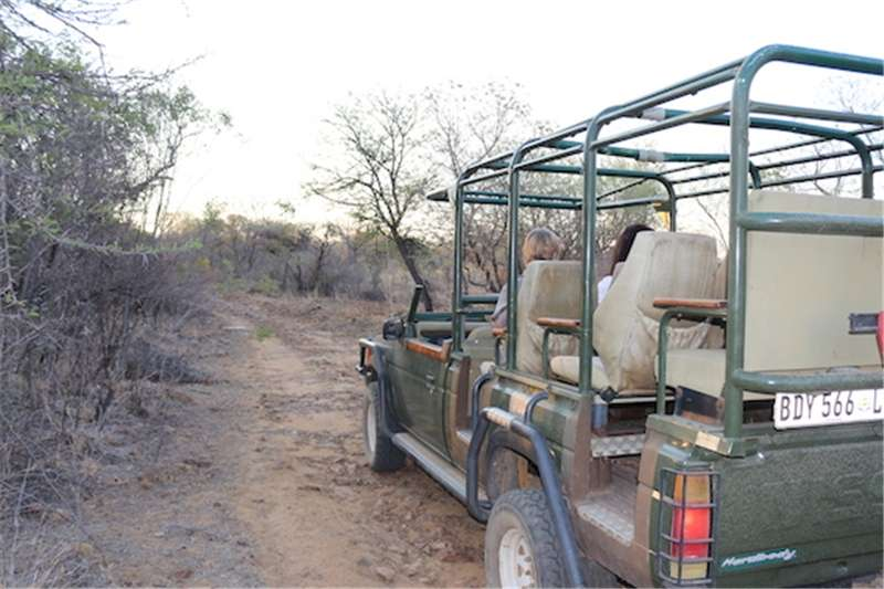 Other Game Farm for Sale (Limpopo)