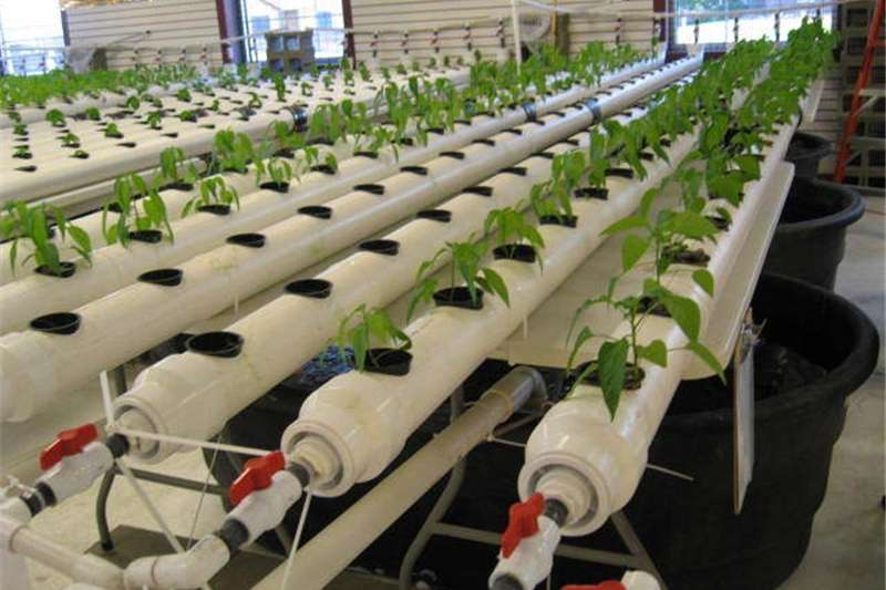 Other planting and seeding Aquaponics and Hydroponics manufactures Planting and seeding