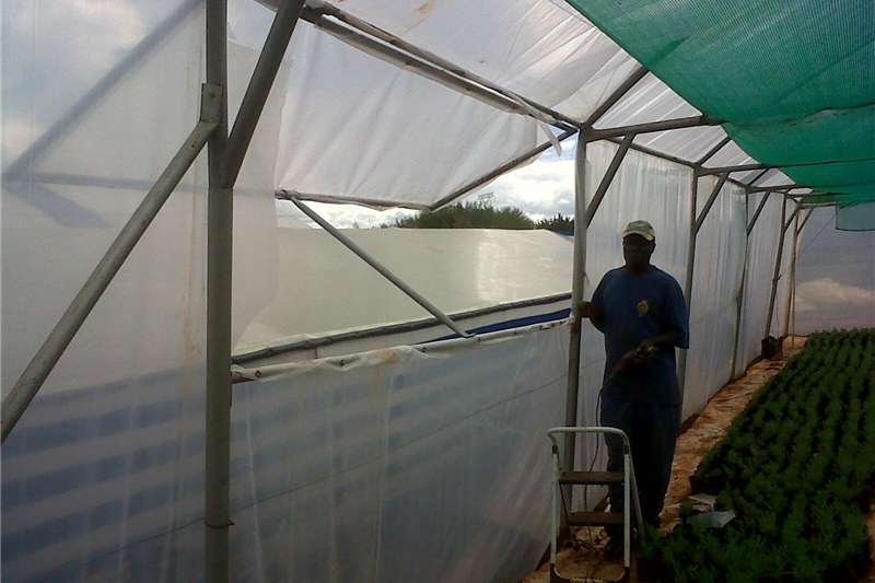 Other planting and seeding Greenhous for Sale by Sunrise Agrifarm with 200 mi Planting and seeding