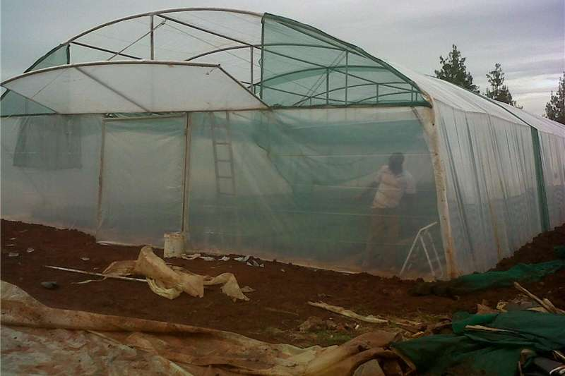 Other planting and seeding Greenhouses for sale from Agrifarm Planting and seeding