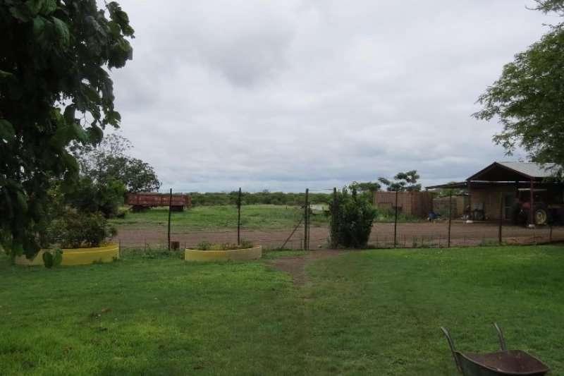Farms 208 HA. FARM BELA BELA AREA Property