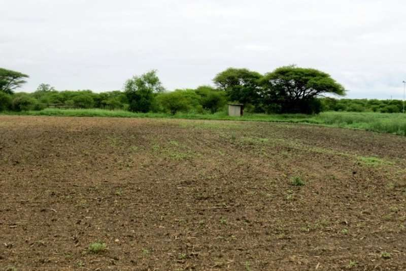 Farms 208 HA. FARM BELA BELA AREA Property
