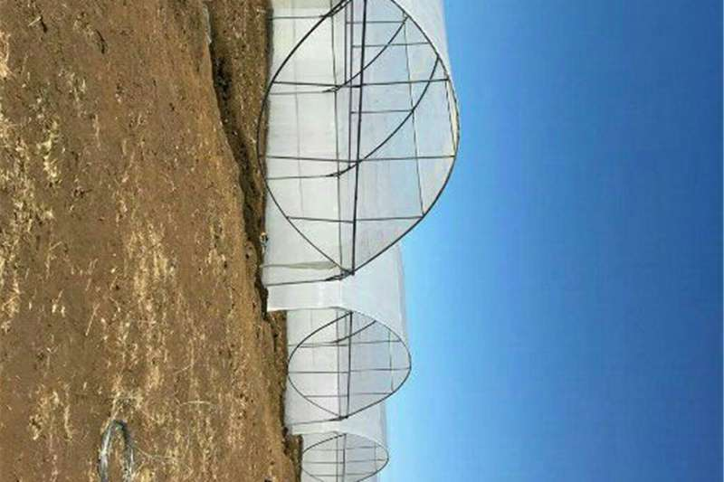 Vegetable  greenhouses Services