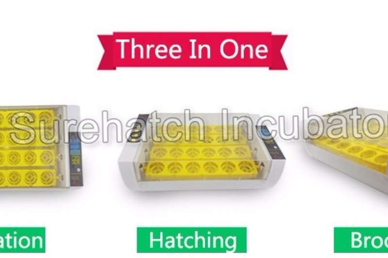 Surehatch Mama-Hen 24 Egg Incubator