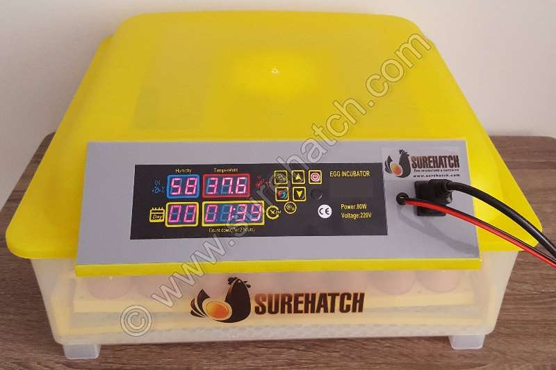 Surehatch MiniHatch 48 Egg 12V and 220V Incubator